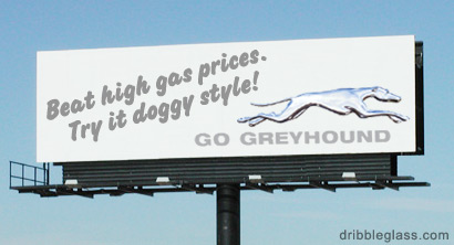 Funny and Geeky Cool Pics-grayhound.jpg