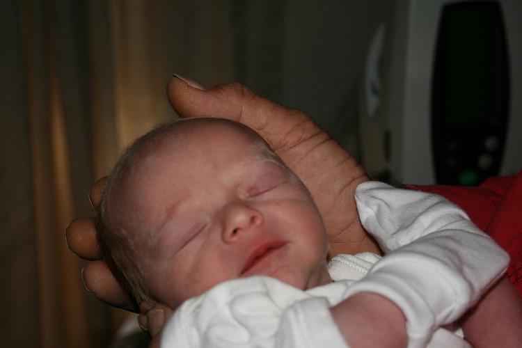 My grandson needs your help!!!!!-crewe-poppo-2-small.jpg
