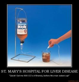 Our fellow geek Kari-st-marys-hospital-liver-disease-brandy-booze-hospital-li-demotivational-poster-1285303626.jpg