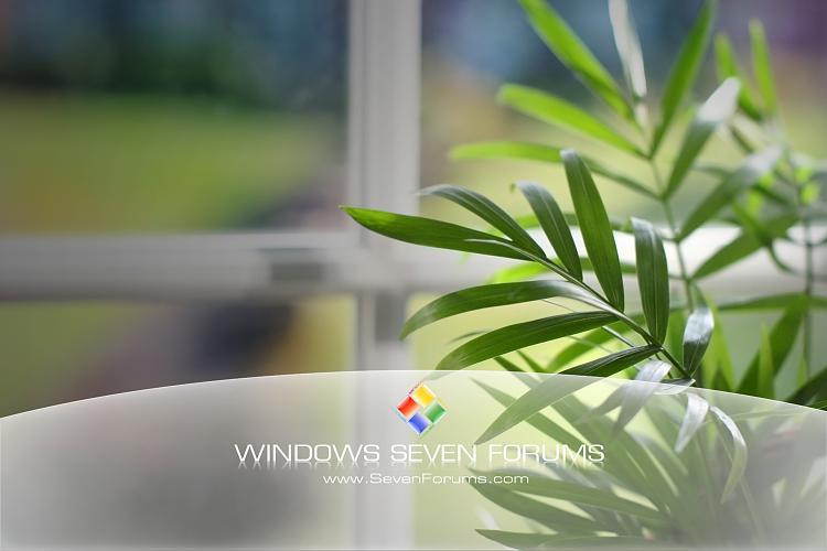Custom Windows 7 Wallpapers - The Continuing Saga-green-leafs-glass.jpg
