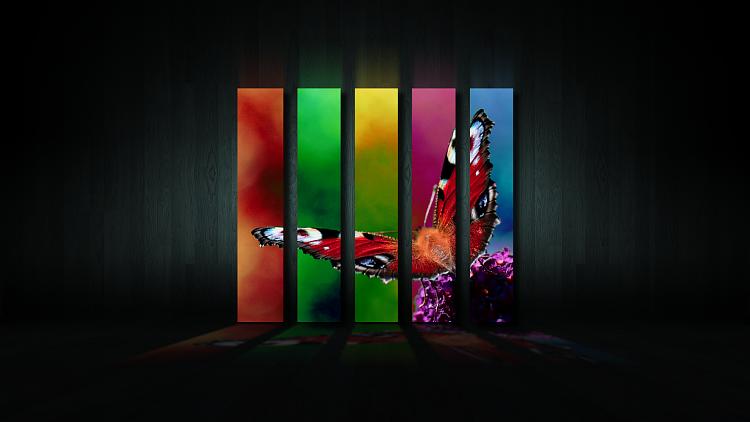 Custom Made Wallpapers-pili-palla_wallpaper.png