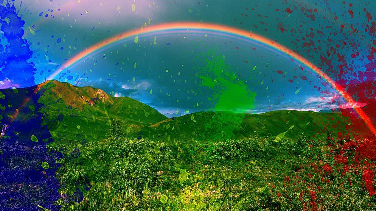 Custom Made Wallpapers-rainbow-wall-01.jpg