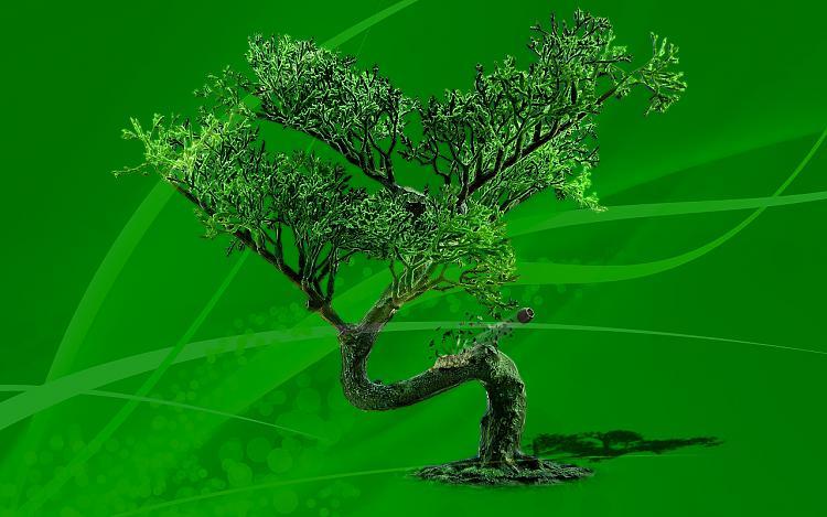 Custom Made Wallpapers-bonsai-manipulation-mod01m.jpg