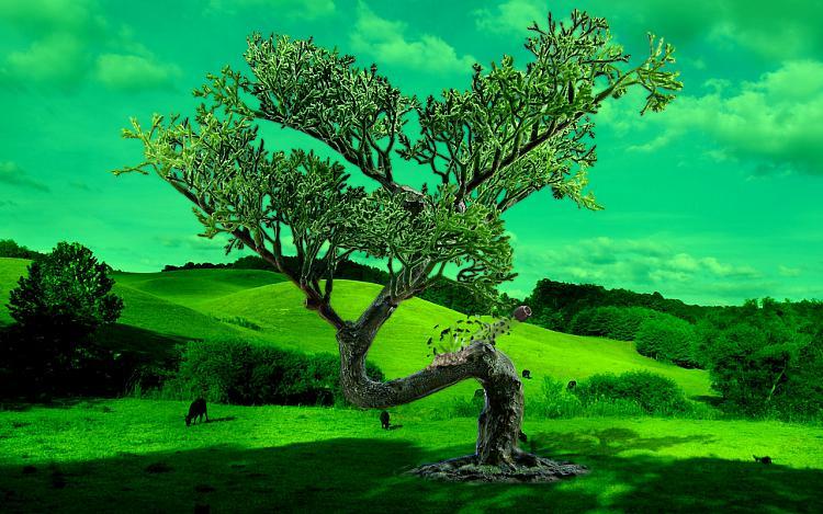 Custom Made Wallpapers-bonsai-manipulation-mod02m.jpg
