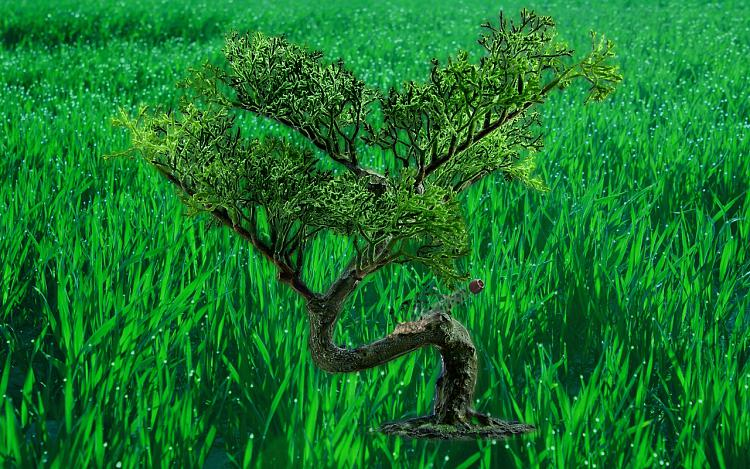 Custom Made Wallpapers-bonsai-manipulation-mod03m.jpg