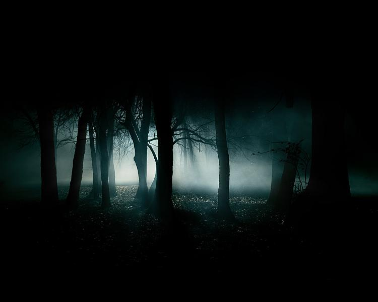 Show us your Desktop-dark-forest-35836-smaller.jpg