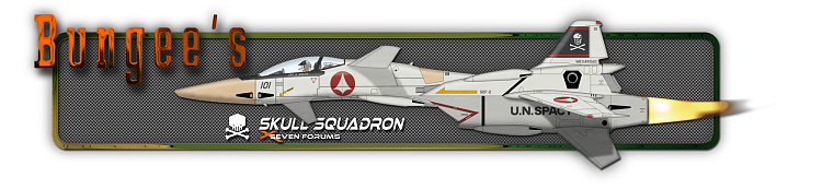 Custom Made Sig and Avatar [12]-bungee-sigfull.png