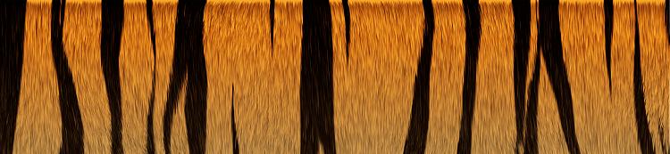 Custom Made Sig and Avatar [12]-tiger_texture2.png