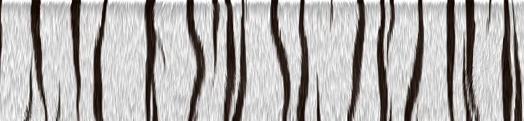 Custom Made Sig and Avatar [12]-tiger_texture4.png