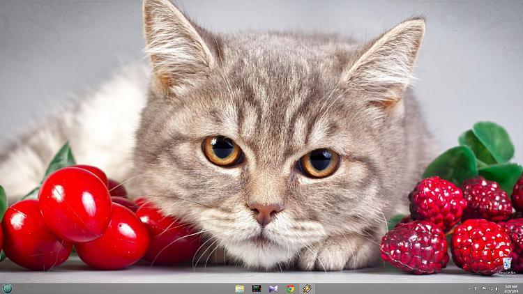 Show us your Desktop 2-untitled.jpg