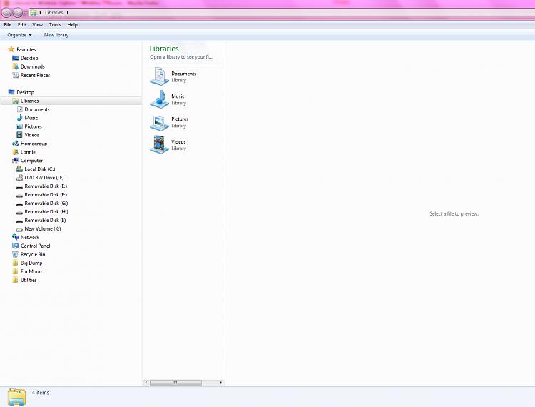 Columns in Windows Explorer-capture1.png