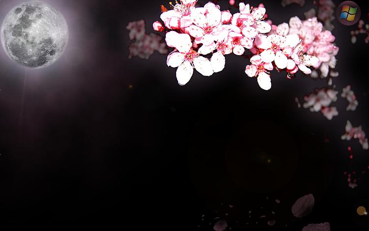 Custom Windows 7 Wallpapers [continued]-sakura-background-w7.png