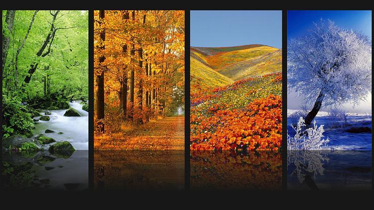 Custom Made Wallpapers-nature.jpg