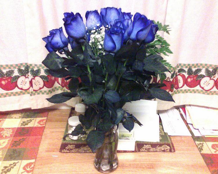 Custom Windows 7 Wallpapers [continued]-blue-roses.jpg