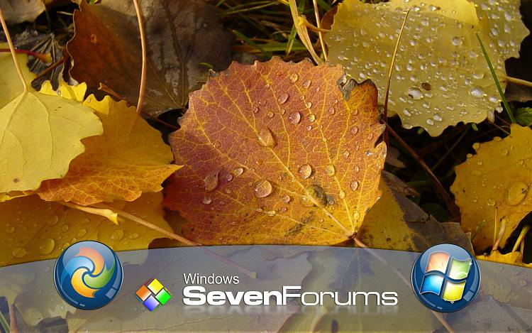 Custom Windows 7 Wallpapers - The Continuing Saga-autumn-sf.jpg