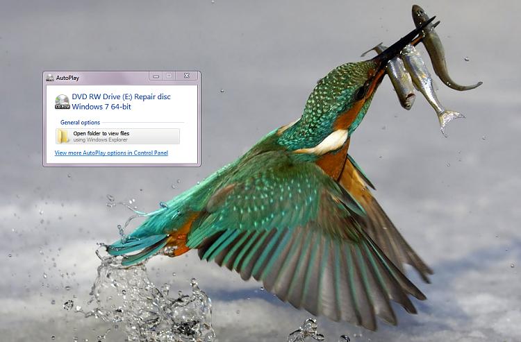 Windows7-Autorun-repair-disc.png