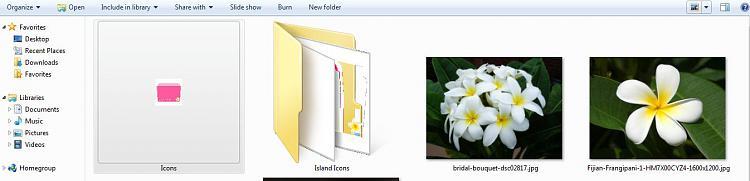 Folder Icons Help-largeiconview.jpg