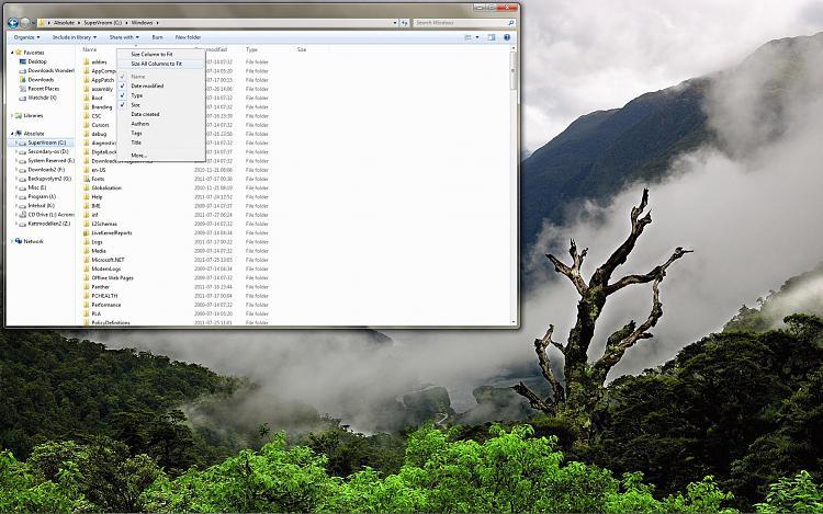 Name column in explorer greyed out-desktop_2011_07_27_07_17_35_434.jpg