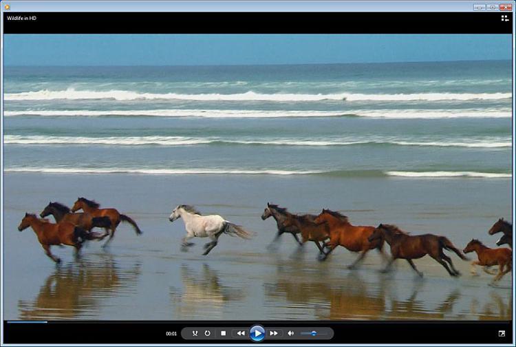 Media Player adding black bars + other probs-wildlife.jpg