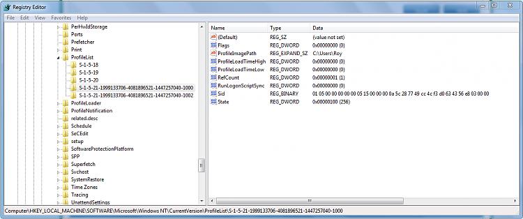 Windows 7 Explorer Memory Issues-reg1000.png