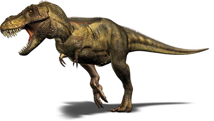 video card-tyrannosaur-dino-large.png