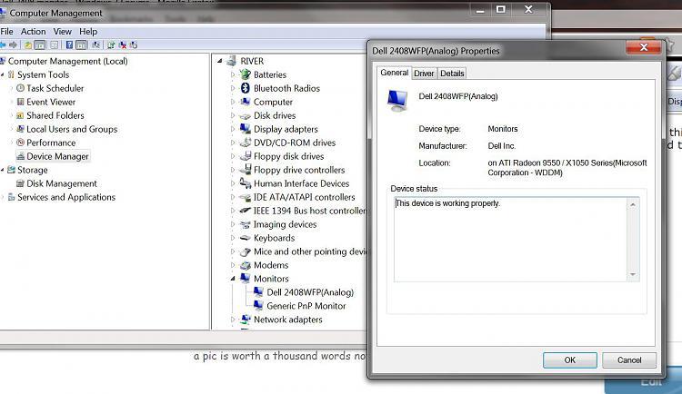 Dell 2408 monitor-capture.jpg