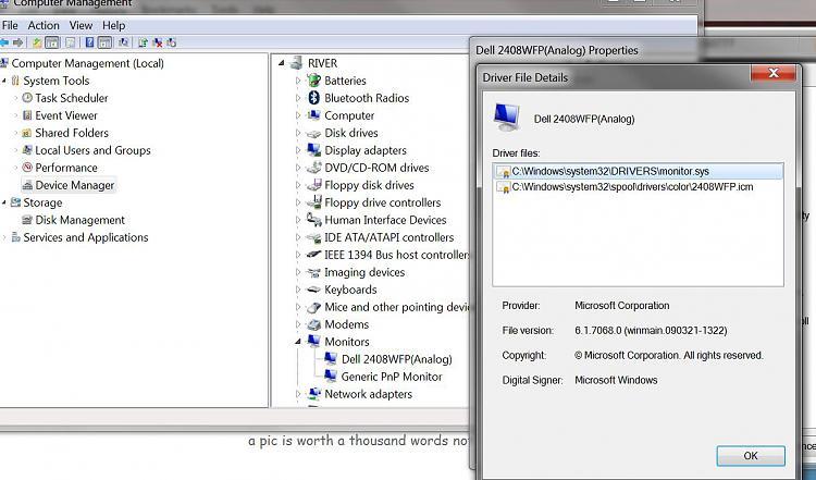 Dell 2408 monitor-capture1.jpg