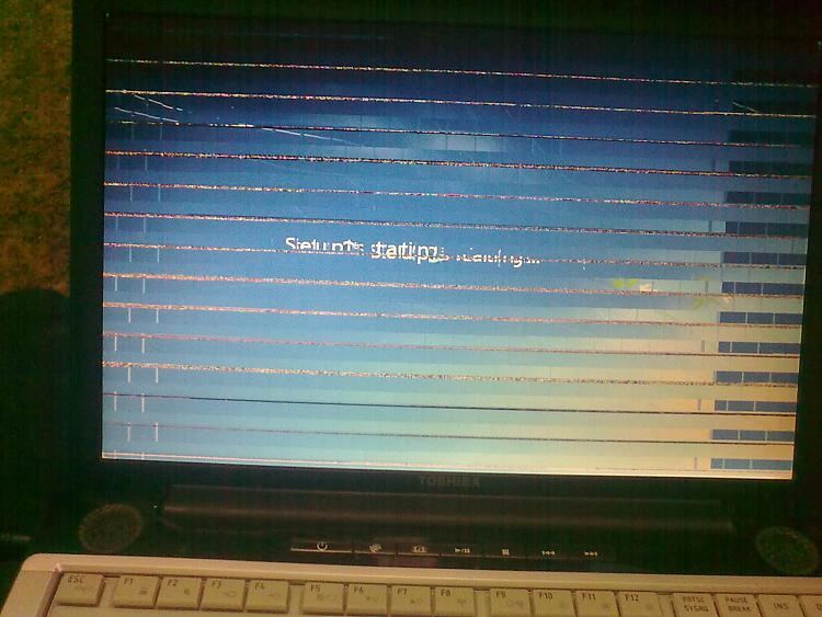monitor problem with my toshiba-02112011011.jpg