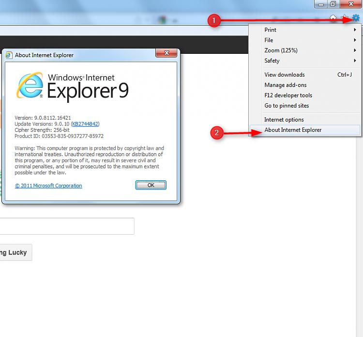 Reinstalling A Preloaded Windows 7 On Laptop-ie-version.png