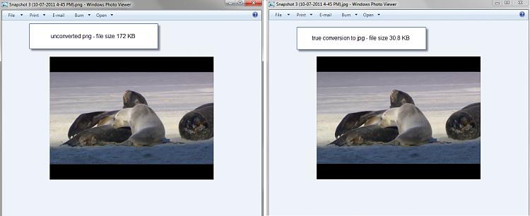 How to save as .jpg-png-vs-jpg.png