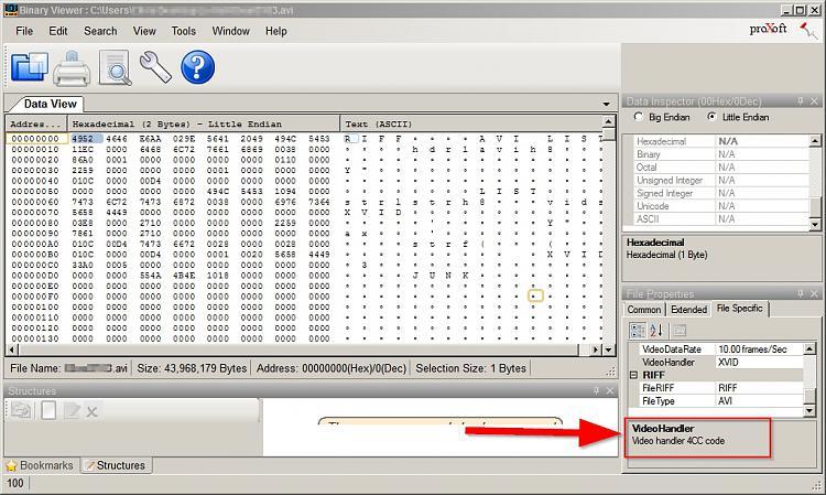 Can't open .avi file-binary-viewer.jpg