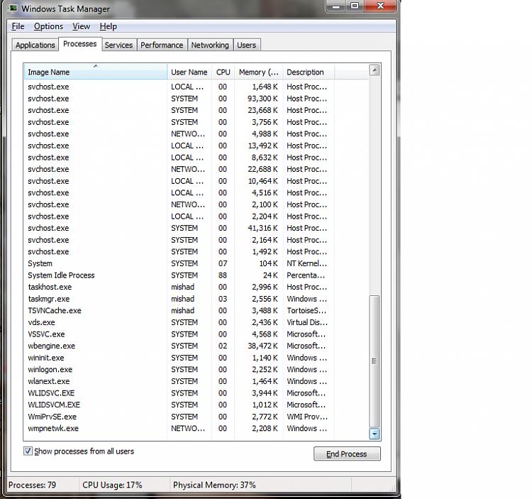 Internet access problem-task_mgr_3.png