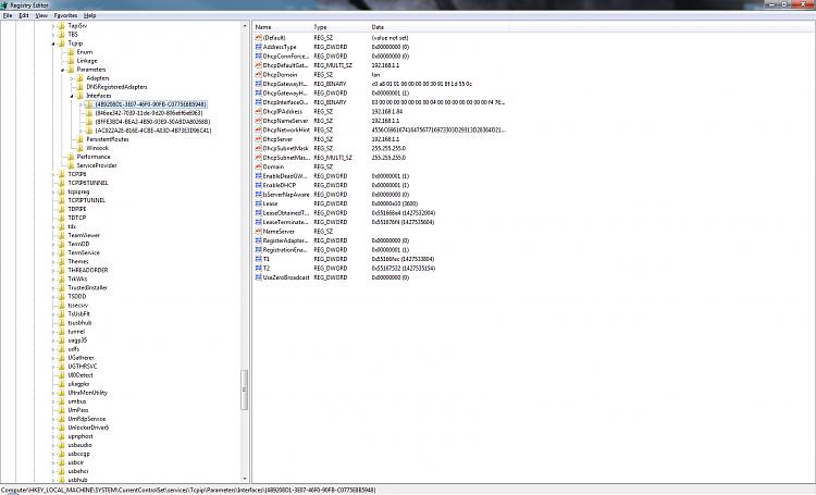 No internet with custom IP-regedit-1.png