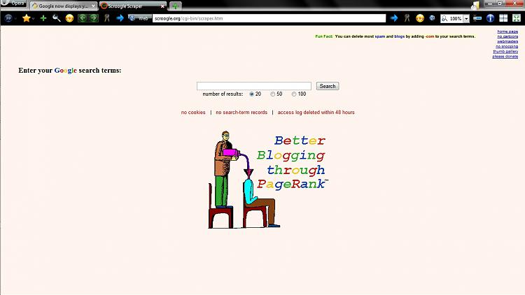Google now displays your IP address.-scroogle-page.jpg