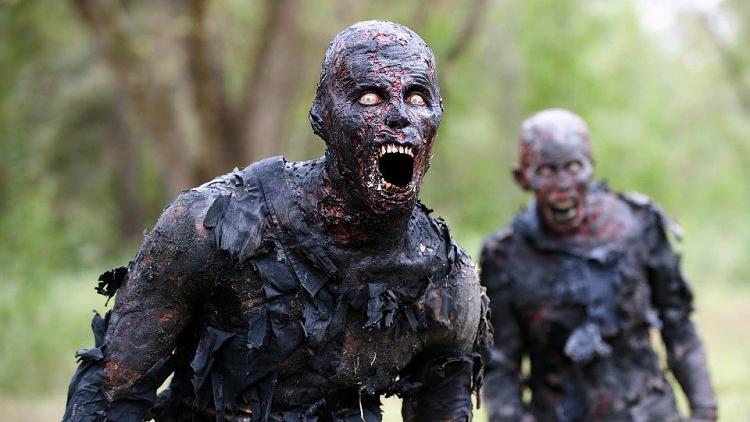 Too much memory on standby.....-burned-walker-walking-dead-season-5-zombies-totally-dangerous-disgusting-1-ever-notice-t.jpg