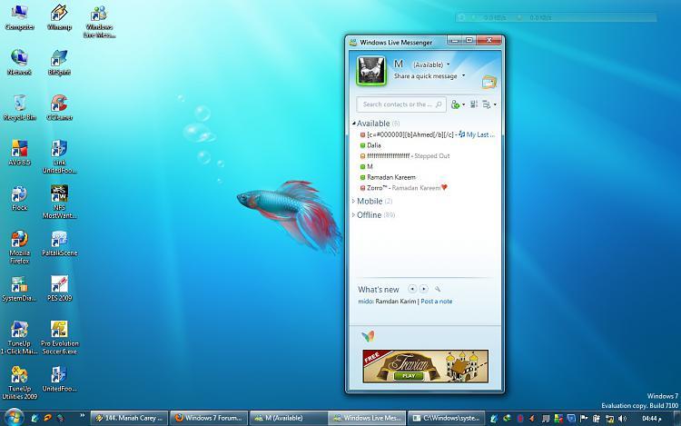 Windows live bugg-untitled.jpg
