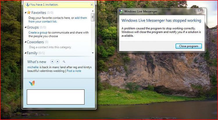 Problem using MSN Messenger-capture.jpg