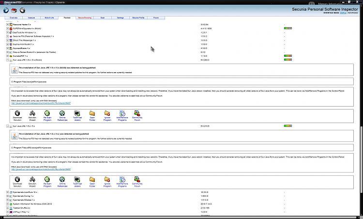 Java.. Windows XP Sp 3-secunia.jpg