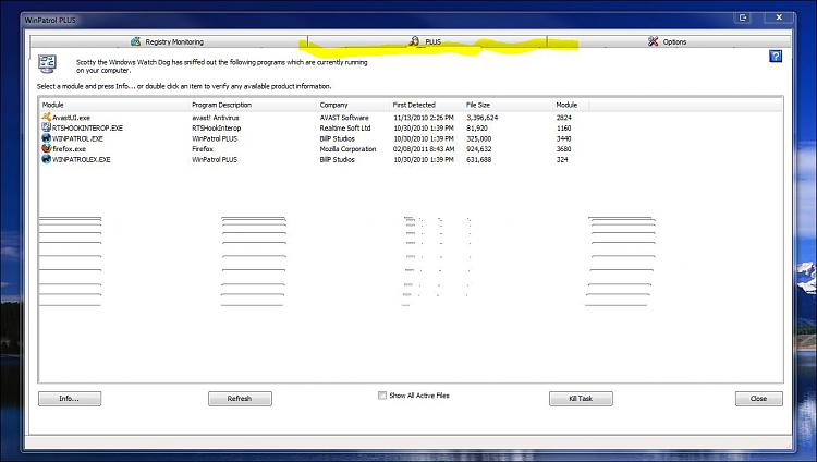 WinPatrol 2011-capture4.jpg