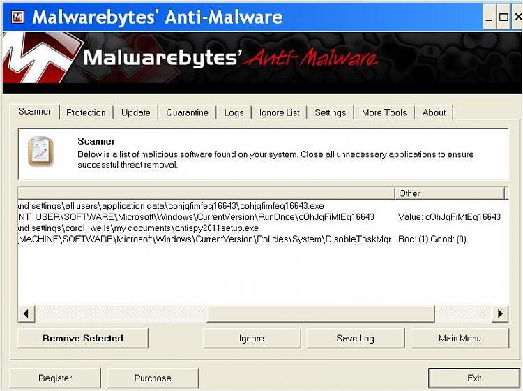 Fake MS Removal Tool-0004.jpg
