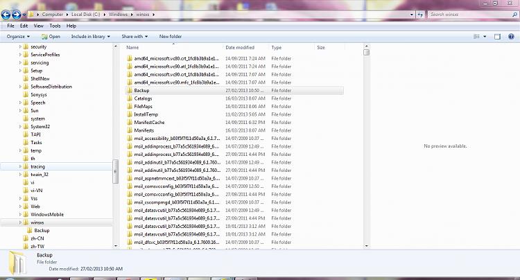 Norton Flagging Windows folders and high CPU usage-windows-winsxs.png