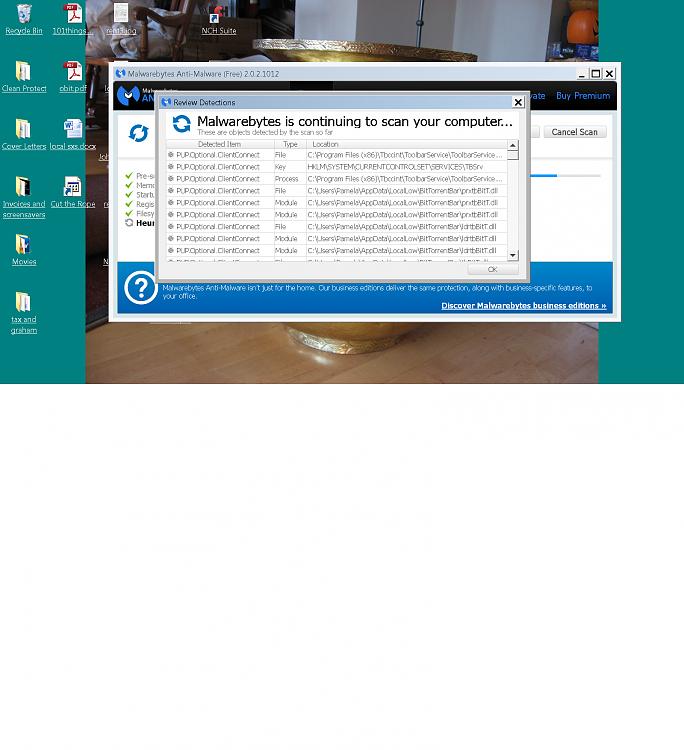 Virus/Malware/Trojon? Infecting My PC-mal.png