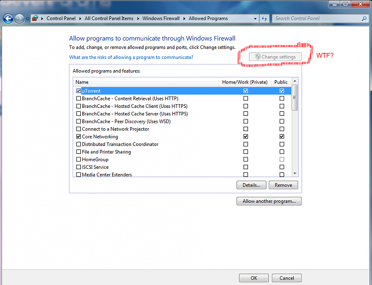 Windows Firewall Settings-wtf.png