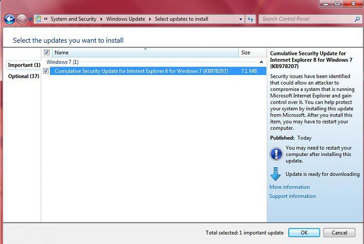 Microsoft Security Bulletin  for January 21, 2010-capture.jpg