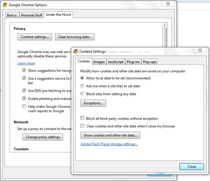 Google Chrome = Virus?-chrome.png