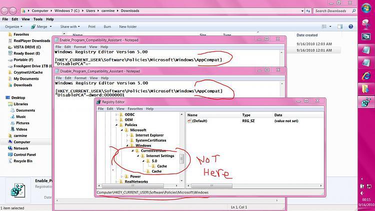Program Compatibility Assistant - Enable or Disable-capture.jpg