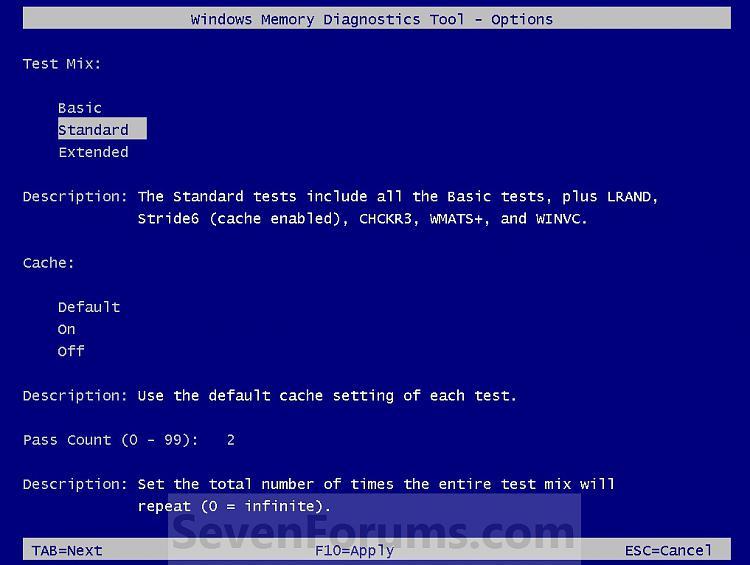 Memory Diagnostics Tool-options.jpg