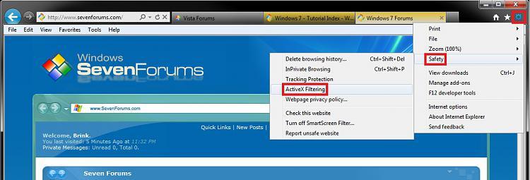 "Internet Explorer ""ActiveX Filtering"" - Turn On or Off-gear.jpg"