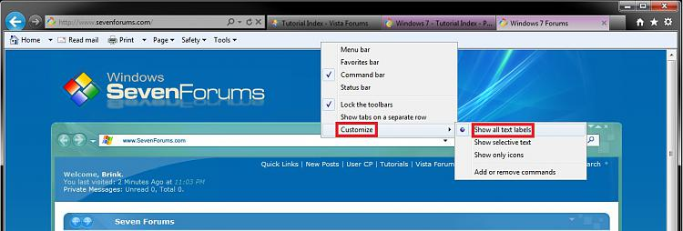 Internet Explorer Command Bar - Customize-text_labels.jpg