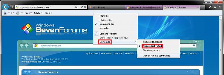 Internet Explorer Command Bar - Customize-selective_text.jpg